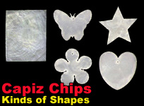 handicraft natural shell jewelry components Philippines Capiz Chips different shapes and sizes.