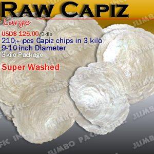 Raw Capiz Shells