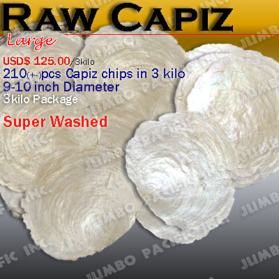 Capiz Shell Raw, Capiz Shell Chips, Capiz Shells, Philippines Capiz Shells, Capiz Seashells,