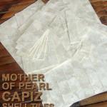 Capiz Walling Panels, Shell Tiles, Shell Panels,